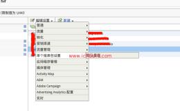 Adobe Analytics基础配置(6)——单个报表包配置