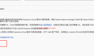 部署Adobe Audience Manager方法一