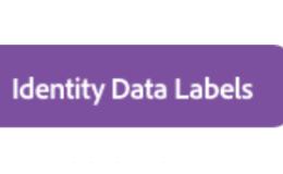 Adobe CDP中的数据治理Data Governance